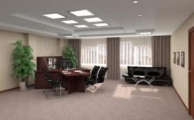 Кабинет директора вид 1
